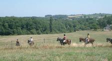 Balade à cheval dans le vignoble Gaillacois près d'Albi