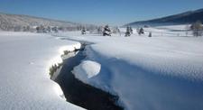 Sortie rando-balade raquettes au cœur du Jura