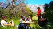 Stage survie milieux naturels Castres