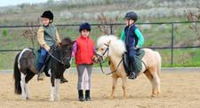 Randonnée équestre à cheval ou poney à Marseille