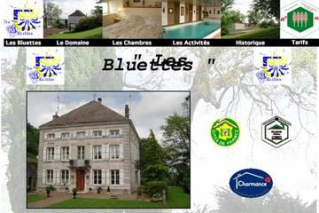 Chambres d'hôtes Les Bluettes à Montigny-le-Roi (Christine et Olivier Charcosset)