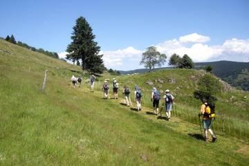 Association Vosges en Marche