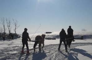 Séance de Ski Joering près de Gap
