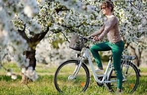 Location de Vélo Electrique à Aix en Provence