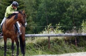 Cours d'équitation près de Chambéry