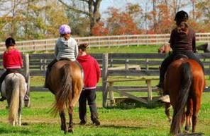 Cours collectifs d'équitation près de Lyon