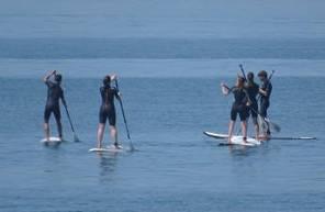 Cours de Paddle à l'Île de Ré