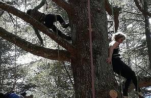 Grimpe d'arbres Thonon-les-Bains
