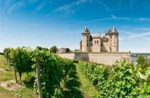 Vol en montgolfière - tour au dessus de Saumur et de la Vienne