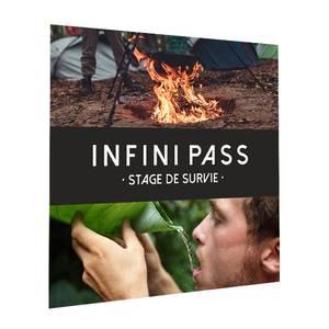 Infini Pass Stage de Survie