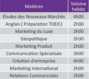 Matières et horaires du Bachelor Marketing & Communication de Progress Com