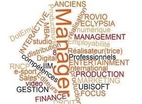 MBA Video Game Management de l'IIM