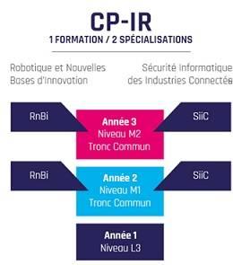 CFI - Organisation du Cursus