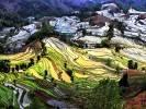 Chine - Yunnan - Yuanyang